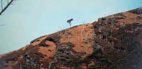 Glendalough_04