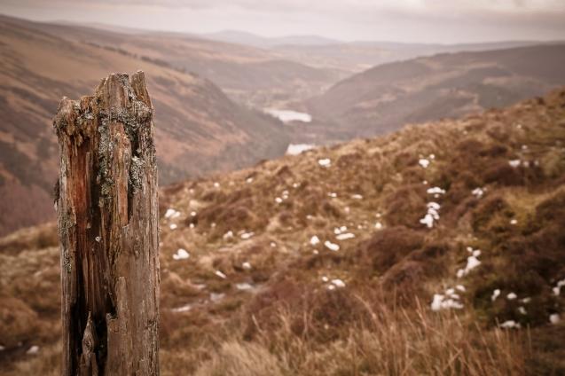 Glendalough_08